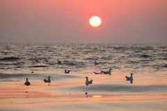 Sonnenuntergang in Lubmin